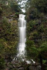 Great Ocean Road 60 (Scott Weatherson) Tags: trees nature water forest waterfall australia victoria greatoceanroad lorne surfcoast erskinefalls