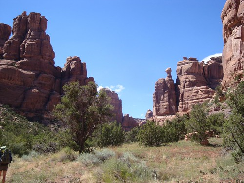 Owl Creek pillars