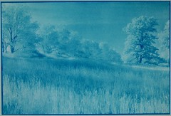 Infrared Pennsylvania Landscape: Cyanotype Version by John Fobes (john_fobes) Tags: ir all rights infrared reserved cyanotype copyrighted alternativeprocess kodakhie hie altprocess infraredfilm copyrightedallrightsreserved johnfobes