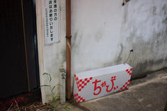 08.09Miyoshi-9