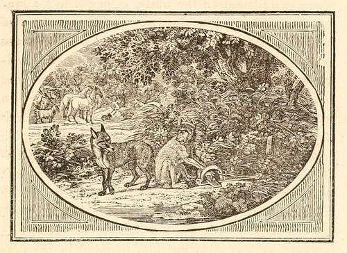 Vulpes et Simius Rex