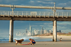 (Pawel Papis Photography) Tags: ocean city dog playing beach dogs water lamp composition buildings person pier sand exercise surfer wave spit australia surfing pump wharf frame highrise qld framing goldcoast pawel thespit dogsonbeach