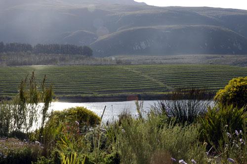 Creation Wines, Hemel-en-Aarde