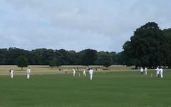 Village cricket (oldfirehazard) Tags: trees summer england sport norfolk august cricket tradition 2010 holkham stiffkey villagecricket