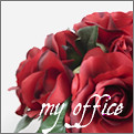 myoffice_define1lady