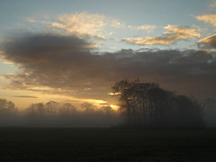 Morning has broken (Mr Grimesdale) Tags: park morning mist liverpool sunrise dawn olympus morningmist merseyside e510 croxteth stevewallace croxtethpark mrgrimesdale liverpoolparks