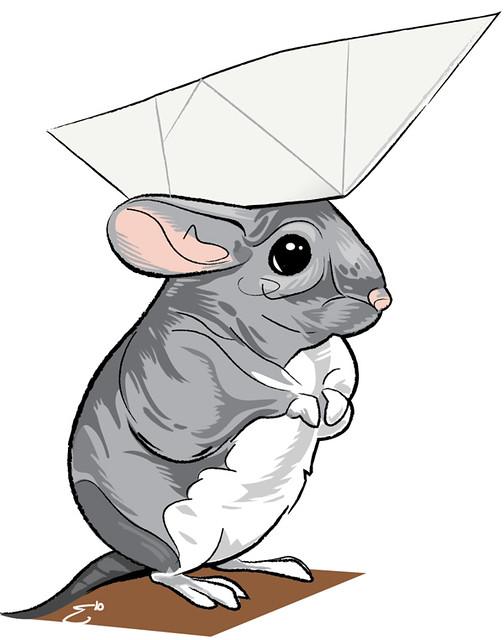 Chinchilla Wearing A Paper Hat