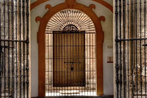 Gate and grille. Seville. Puerta y reja. Sevilla