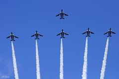 LEADERS BENEFIT (miwa**) Tags: blue sky japan airplane nikon aircraft airshow nikkor matsushima miyagi t4 2010 miwa blueimpulse jasdf d90 70300mmf456d  nikond90 higashimatsushima