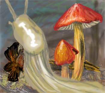 w_2010-08-26_slug2