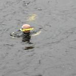 1008 28 Children First Raft Race (100) thumbnail