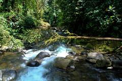 Mindo - Ecuador
