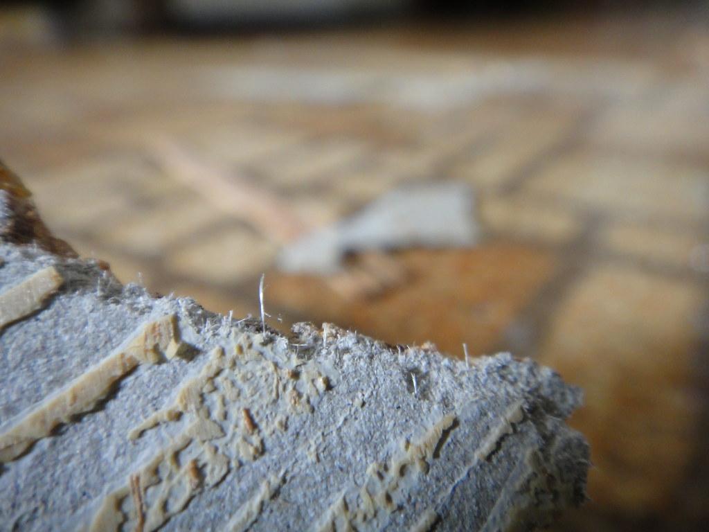 What Does Asbestos Linoleum Look Like XM Roccommunity - Is there asbestos in linoleum flooring