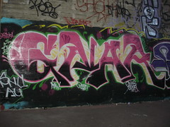 GNAR SNV AUK TEW (Trump For President) Tags: gnar snv snvk au auk tew graffiti bay area