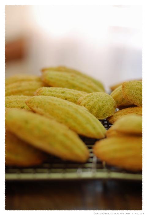 pistachio madeleines© by Haalo