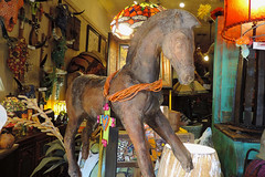 Fredericksburg - Horse