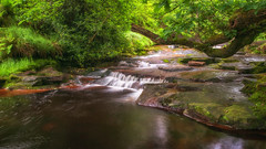Summer flow (Lee~Harris) Tags: water cascade tree colourful light shade foliage beauty flowing waterfall outdoors river stream rugged growth green nikon landscape landscapes landscapephotography serene tranquil lens contrast