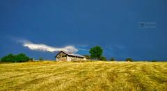 Güz Zamanı Sırt (Halil Bulut) Tags: güz yaz ekin başak sırt eskipazar karabük anadolu anatolia bulut cloud turkey türkiye samanlık ot saman köy
