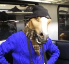 uomo cavallo fussen 2007 - horse boy (rupertalbe - rupertalbegraphic) Tags: boy horse monaco uomo alberto cavallo mariani horseboy rupertalbe rupertalbegraphic