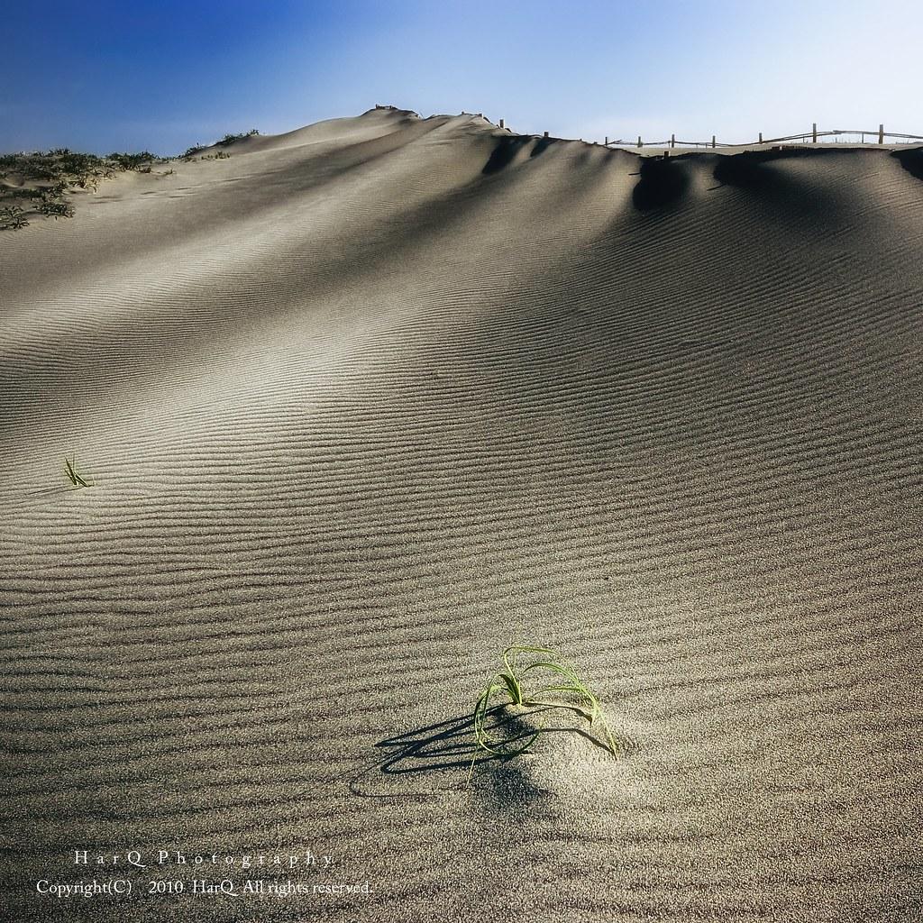The Nakatajima Dune *