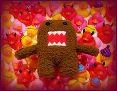 Domo's nightmare (kathleen walsh) Tags: silly toys stuffed vinyl ducks plush scream domo nightmare evilmini