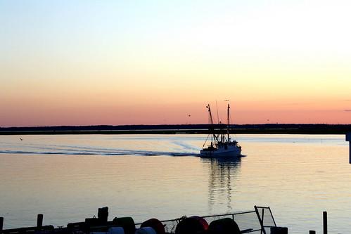 Chincoteague Island, Summer 2010