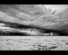 Nature's Harbinger (Wil_Bloodworth) Tags: blackandwhite mountain storm mountains rain clouds landscape nationalpark buffalo searchthebest wildlife jackson infrared wyoming grandtetons bison jacksonhole grandtetonnationalpark bloodworth parkimaging