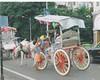bbyhorse (Dustyshoes1) Tags: bombay mumbai gatewayofindia tajhotel frhwofavs