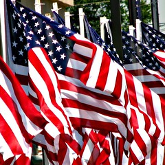 fabulously famous Fourth of Julys (circulating) Tags: summer usa holiday america fly afternoon unitedstates flag unitedstatesofamerica wave americanflag flags fourthofjuly 4thofjuly standard independenceday redwhiteandblue nationalday oldglory thestarspangledbanner federalholiday