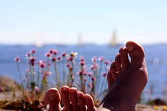 Summer feet by the sea (polaroidized) Tags: ocean sea summer sunlight feet water finland helsinki helsingfors finnish meri suomenlinna havet archipelago sveaborg hav klippor weekendassignmentandcontestgroup kallioita