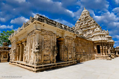 Kailasanathar Temple (Arvind ( www.arvindbalaraman.com )) Tags: old travel vacation india color colour detail building heritage tourism monument beautiful beauty statue wall architecture asian religious temple design ancient asia different close god unique painted indian south grunge prayer religion madras goddess culture landmark visit tourist carving structure malaysia idol trust shiva multicolored hindu tamil pilgrim kanchi decorated kovil pallava kancheepuram psmjulycompetition