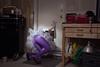 Squeeze (laurenlemon) Tags: interestingness purple garage creative squeeze explore conceptual frontpage dogdoor explored canoneos5dmarkii laurenrandolph laurenlemon thisisaphotoblog thisisaphotoblogcom wwwphotolaurencom