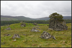 Field of Stones (spodzone) Tags: nature rock stone landscape scotland highlands rocks boulders geology farr strathnairn lithology dunlichity psammite neoproterozoic creagbhuidhe semipelite