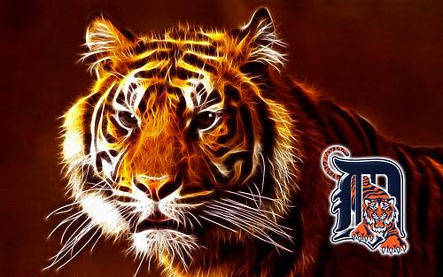 detroit tigers wallpaper. Detroit Tigers Wallpaper