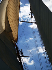 Up In The Rig (Coquine!) Tags: classic vintage sailing yacht hampshire isleofwight solent segeln segel mariette mariquita tuiga christianleyk westwardcup
