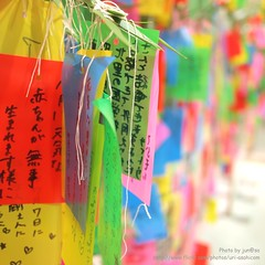 Star Festival(Tanabata ) (jun@sa) Tags: summer favorite festival japan closeup colorful bokeh   tanabata    500x500 starfestival