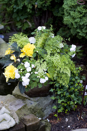 Heavenly Scent Herb Farm: Shade Container