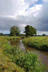 River (Alastair Cummins) Tags: trees green water grass clouds river nikon aqua side country devon axe 1855mm d40 axminster