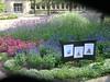 garden sale07 (mtlebanonlibrary) Tags: library libraryprogram mtlebanonlibrary gardensale