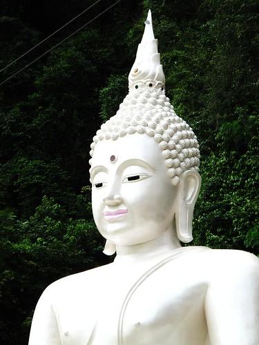 IMG_0938 Buddha Statue