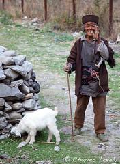 Lamb Herder (charles lovely) Tags: park nepal camp mountain mountains tourism trekking trek highway asia district tourist medical national kathmandu himalayan ngo fund himalya freindship langtang rasuwa charleslovely themountainfund chucklovely mountainfundorg thambuchet