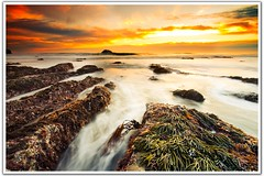 Sea Weed (Nazar's Collection) Tags: sunset newzealand sunlight seascape motion beach water landscape see weed rocks smooth sigma auckland blurr abbas silky muriwai nazar gnd maoribay theunforgettablepictures nazarabbas