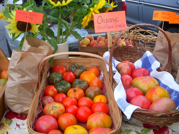 susans-tomatoes