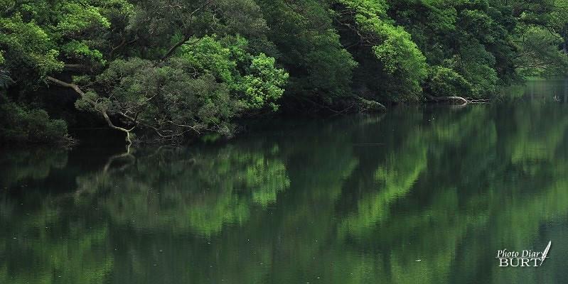 後慈湖:靜謐的湖面