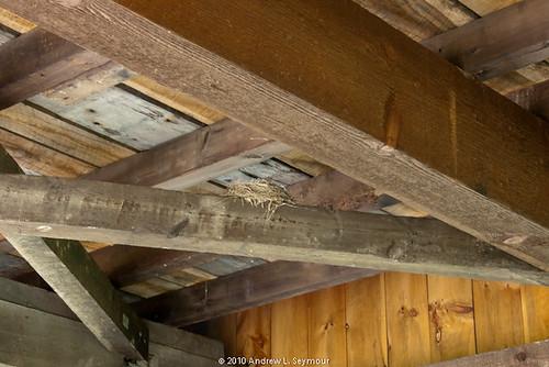Larkin's Covered Bridge (Bird Nest Detail) 098