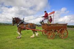 Mill Clydesdales (dawahar) Tags: life horse museum rural photoshop john farming east national heavy hdr mcmillan lanarkshire rothesay kilbride photomatix kittochside