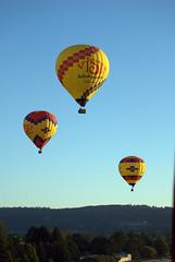BalloonShot103207 (microjan) Tags: morning trees sunlight oregon flight hotairballoons willametteriver newberg