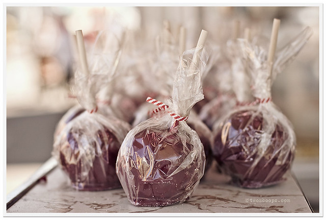 candied apples 206/365