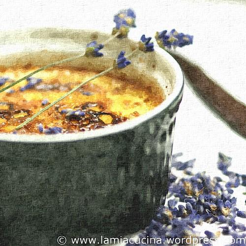 Crème Brulée mit Lavendel