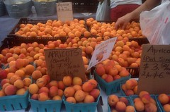 Summer day at the Union Square Farmer's Market